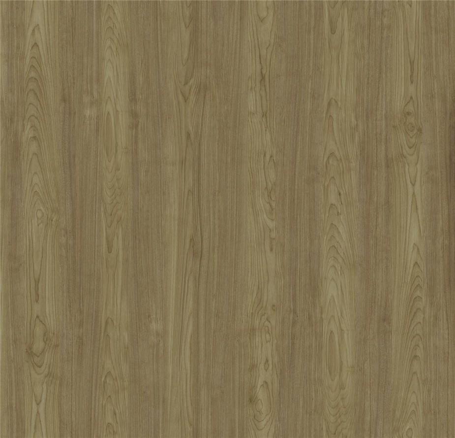 ID6008-01 Sterling Mountain Birch